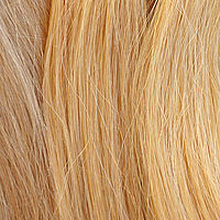 Light-Blond (23A/25R)